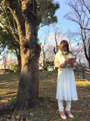 飛鳥山公園 お花見